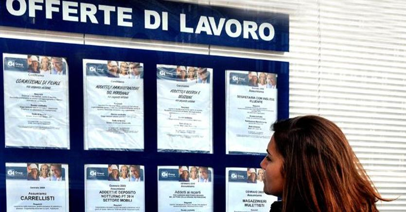 Offerte di Lavoro: Ecco le 10 Figure più Richieste
